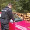 Kontroly vozidel u lesních porostů